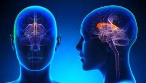 רשלנות רפואית בניתוח במוח